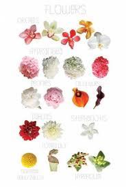 September Flower Chart Flowers Wedding Flowers Flower