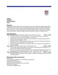 Examples Of Military Resumes Extraordinary Free Military Cv Template Goloveco