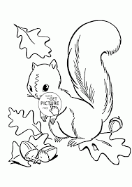 Fall Leaves And Cute Squirrel Coloring Pages For Kids Autumn