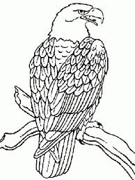 Small Picture Eagle Coloring Page Alric Coloring Pages Coloring Coloring Pages