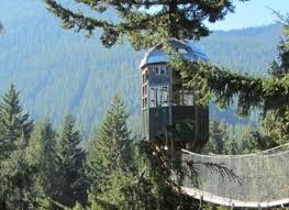 7 Treehouse Hotels That Reach New Heights In Design  Post Ranch Treehouse Vacation California