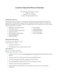 Career Summary Examples For Resume Impressive How To Write A Professional Summary On Resume Examples For Resumes F