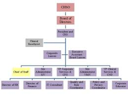 Organizational Chart St Josephs Health Centre