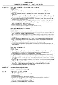 Strategic Information Resume Samples | Velvet Jobs