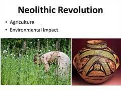 what were the causes and effects of the neolithic revolution neolithic villages continued to divide work between men and women