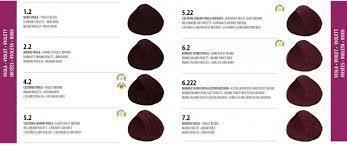Sps Hair Colour Chart Color Design Permanent Hair Colour