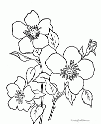 Small Picture Flower Printable Coloring Pages Backgrounds Coloring Flower