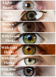 Iris Color Chart Elegant Hazel Eye Color Chart Michaelkorsph Me