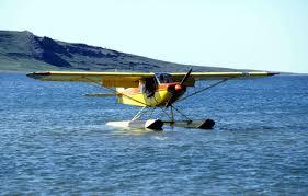 Light Miniature Aircraft Lm 5 Piper Pa 18 Super Cub Wikipedia