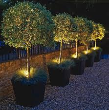 ideas for garden lighting. Small Garden Lighting Ideas 6 For E
