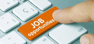 job application the encyclopedia of job opportunities