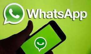 WhatsApp: What does 1 tick mean on WhatsApp? What do 2 grey ticks mean on  WhatApp? | Express.co.uk