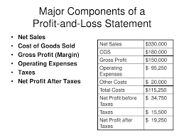 Examples Of Profit And Loss Basic Profit And Loss Template Personal Statement Doc24 Simple 2