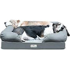 cheap pet furniture. Cheap Pet Furniture Covers Best Dogs Beds Images On Large Bed R