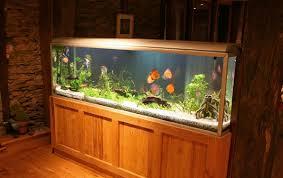 125 Gallon Aquarium Light Hood Best Large Aquariums Reviewed 55 Gallons To 125 Gallon