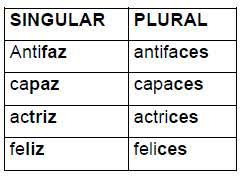 http://www.primerodecarlos.com/SEGUNDO_PRIMARIA/agosto/genero_numero/plural_d_z.htm