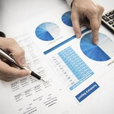 Charted Accountant Chartered Accountant Test Accountests