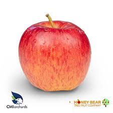 Types Of Apples Chart Washington Apple Commission