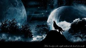 wolf howling at the moon wallpaper hd. Simple Wallpaper Wolf Moon Wallpaper With Howling At The Hd W