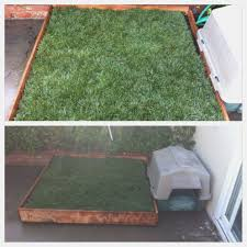 diy potty patch for riley with real grass for about 45 in