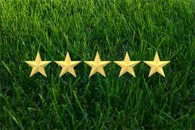 customer reviews trugreen