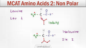 Mcat Amino Acid Chart Mcat Amino Acids 2 Hydrophobic Non Polar Neutral Side Chains