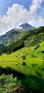Mountain Green Pictures
