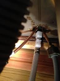 sinks how to replace spray hose on kitchen sink sprayer