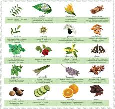 Aromatherapy Scent Chart 66 Uncommon Candle Scent Mixing Chart