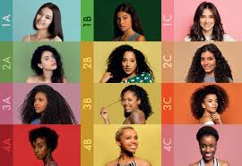 African American Natural Hair Type Chart Find Your Hair Type