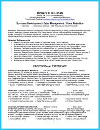 Business Development Manager Resume Resume Summary Business Development Manager Therpgmovie 20