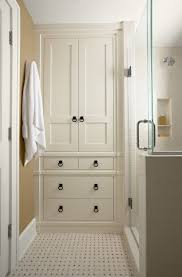 Cabinet Designs For Bathrooms Simple Inspiration