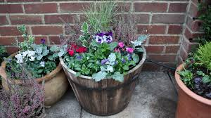 how to plant a winter container follow