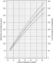 Average Fetal Head Circumference Chart Abdominal Circumference Size Chart After Chitty Et Al 5