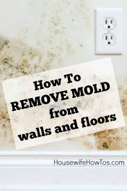 How To Remove Mold From Walls Housewife How To S