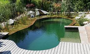 Swimming Hole Pool Design A Swimming Hole In Your Backyard Gallery Natural