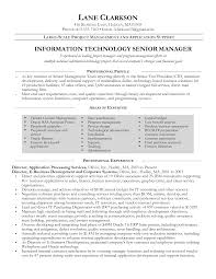 Information Technology Manager Resume Free Resume Example And