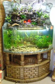 Cool Aquariums For Sale 546 Best Aquariums Images On Pinterest Aquarium Ideas Fish