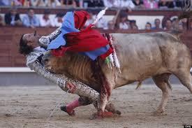 bull fighting injuries.  Fighting Julio Aparicio GORED IN THROAT During Bullfight GRAPHIC PHOTOS Inside Bull Fighting Injuries I