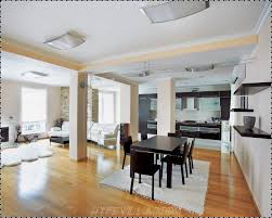 Solid Color Kitchen Rugs Living Room Area Rugs Solid Color Attic Bonus Room Family Room