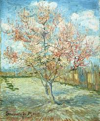 vincent van gogh s peach trees in blossom souvenir de mauve is an oil on canvas inches that is housed in the kröller müller museum in otterlo