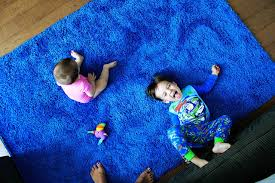 Henry is apparently a fan of bright blue rugs (who knew?), he rolled around  on that thing all morning, introducing all his toys to the new bright blue  rug.