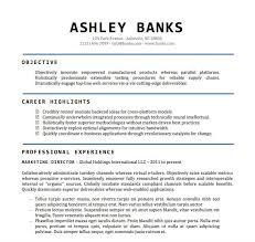 Free Professional Resume Templates Microsoft Word Resume Corner