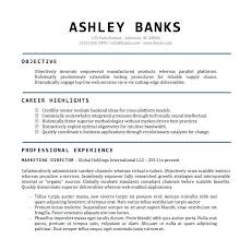 Resume Formats Word Best Resume Layouts Word Curriculum Vitae Format Word Com Proforma Of