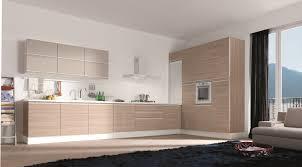 Modern Kitchen Cabinets Miami Chinese Kitchen Cabinets Miami Fl Home Design Ideas Design Porter