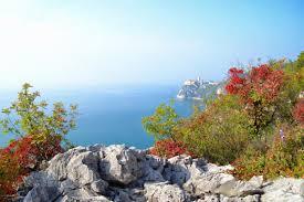 Risultati immagini per Trieste: il mare calmo sulle rive
