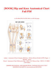 Book Hip And Knee Anatomical Chart Full Pdf