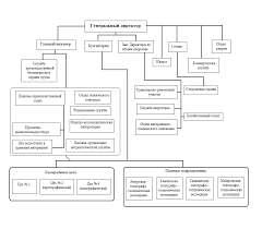 Анализ доходов организации Курсовая работа Рис 2 1 Структура ФГУП ДВ АГП