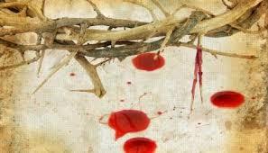 Resultado de imagen para preciosa sangre de cristo