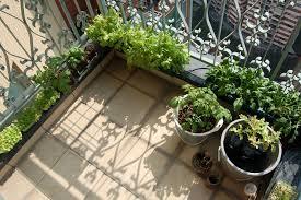 apartment herb garden. Apartment Herb Garden Balcony Corner O